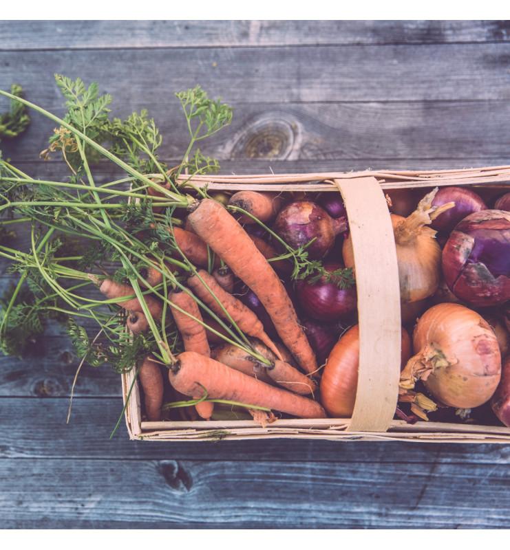 Panier fruits et légumes duo